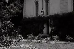 Kaple-Film